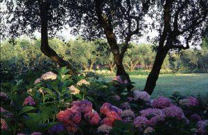 i_giardini-della_landriana